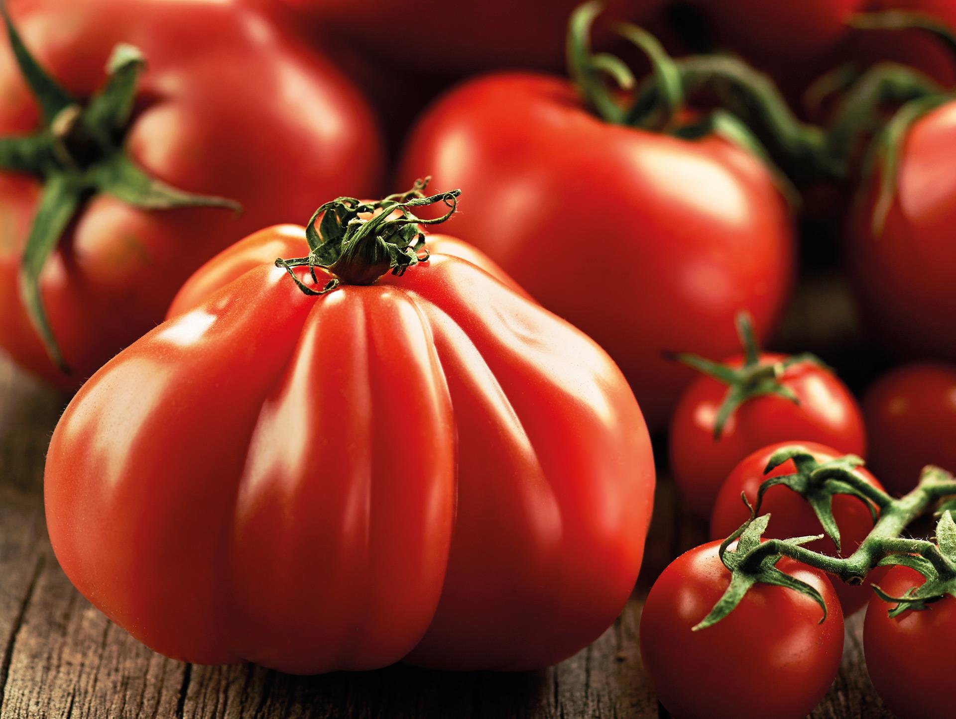 Art_Tomatoes.jpg